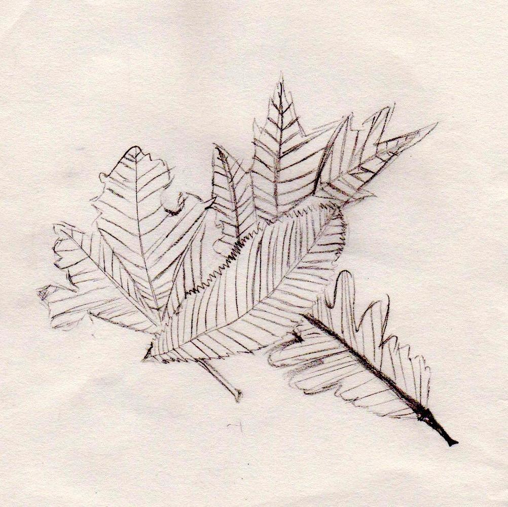 Urban Sketching 55