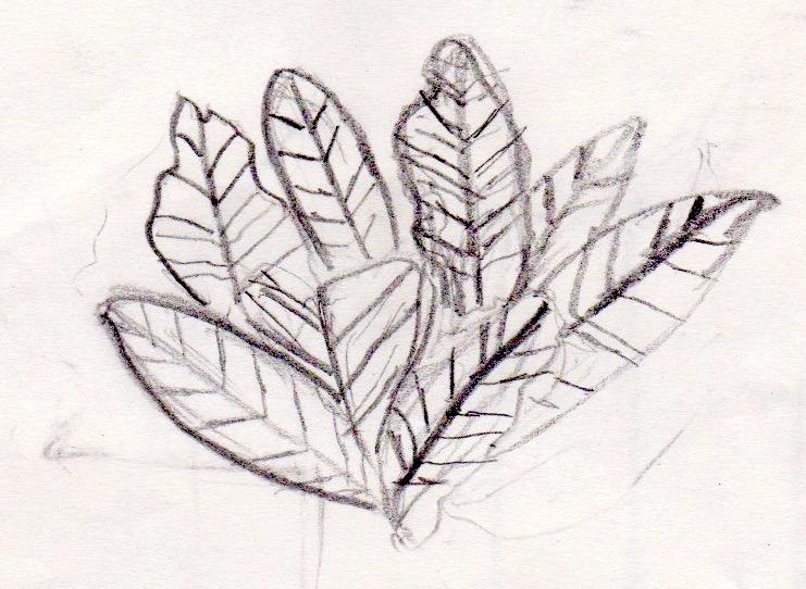 Urban Sketching 58